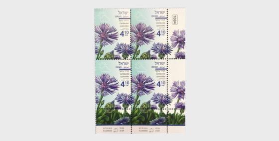 Spring Flowers - (Centaurea Cyanoides) - Tab Block - Block of 4