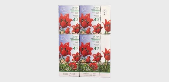 Spring Flowers - (Tulipa Agenensis) - Tab Block - Block of 4