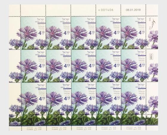 Spring Flowers - (Centaurea Cyanoides) - Sheet - Full sheets