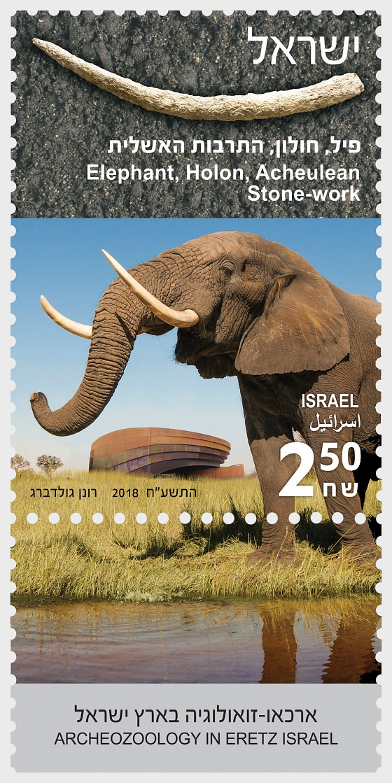 Archeozoology in Eretz Israel - Elephant - Set