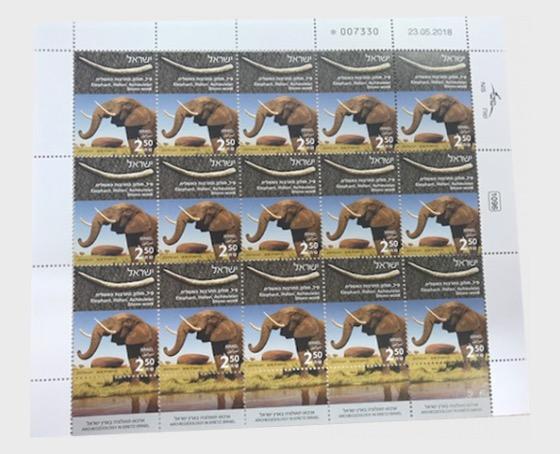 Archeozoology in Eretz Israel - Elephant - Sheetlets