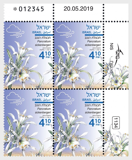 Autumn Flowers - Pancratium Sickenbergeri - Plate Block - Plate block of 4