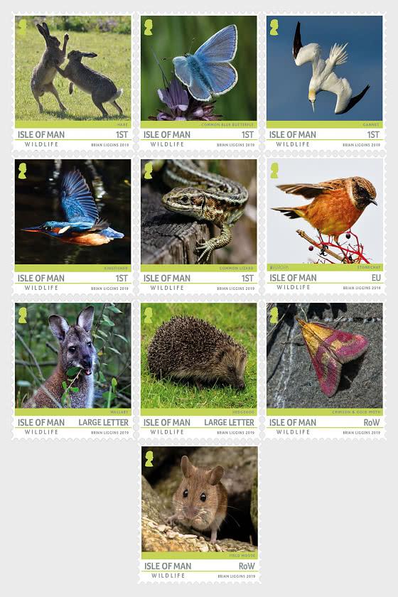 Isle of Man Wildlife - Set