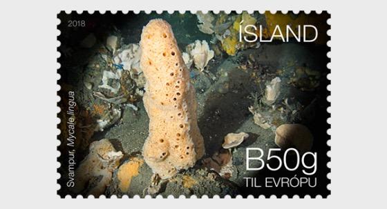 Iceland's Seabed Ecosystem III - (Sponge) - Set