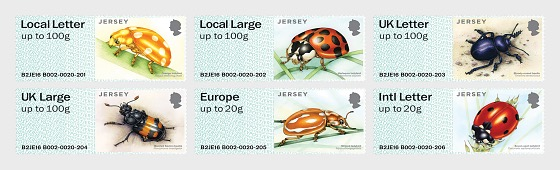 Jersey Post & Go - escarabajos - Series