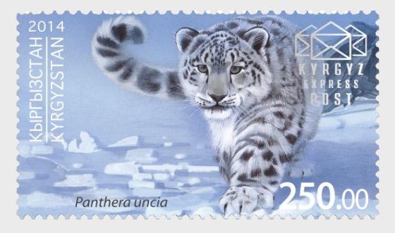 Snow Leopard - Set