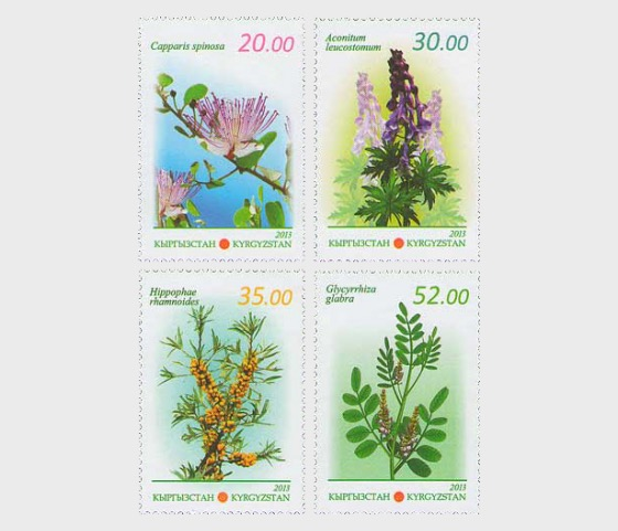 Flora of Kyrgyzstan - Medicinal Plants - Set