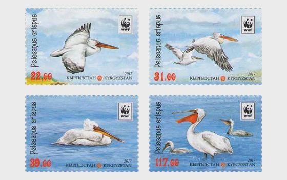 Dalmatian Pelican - Set