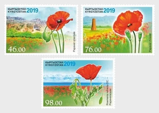 Flora of Kyrgyzstan, Poppy - Set