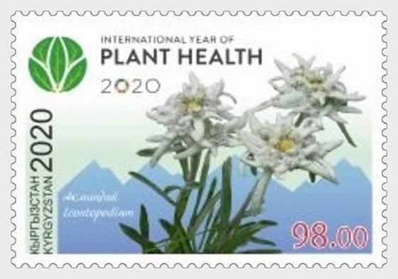 2020 - Año Internacional de la Sanidad Vegetal (ONU) - Series