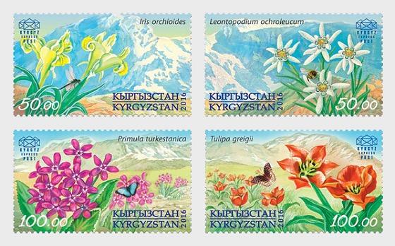 Flora of Kyrgyzstan - Set