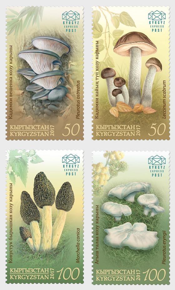 Edible Mushrooms of Kyrgyzstan - Set