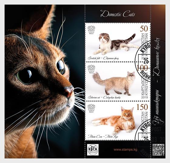 Domestic Cats - M/S CTO - Miniature Sheet CTO