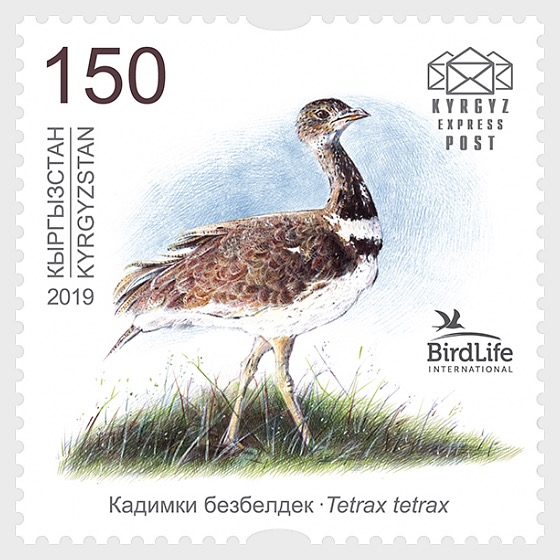 Bird of the Year - The Little Bustard - Set Mint - Set