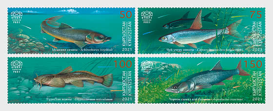 Kyrgyz Republic Red Data Book (III) - Fishes - Set Mint - Set