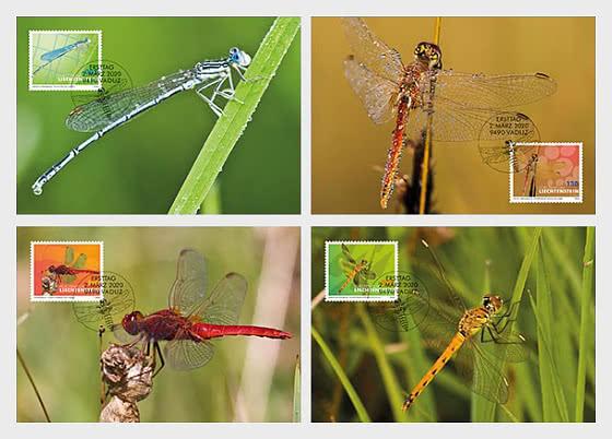 Dragonflies - II - Maxi Cards