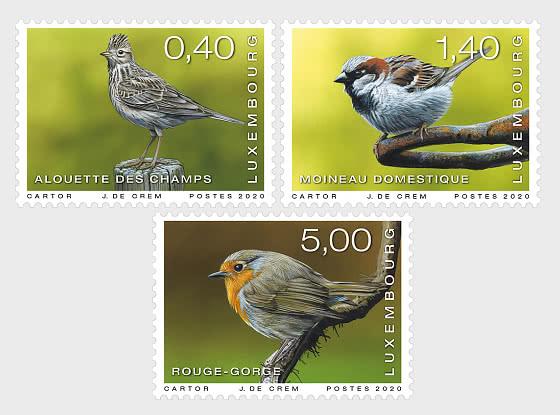 Seltene Vögel 2020 - Serie