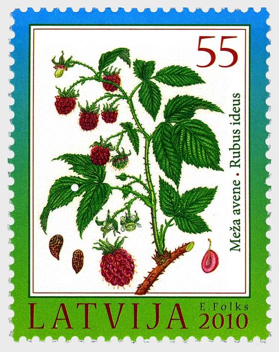 2010年拉脱维亚的森林财富 - 覆盆子 - 套票
