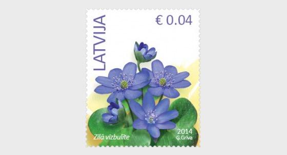 Anemone hepatica - Flowers (standard) reprinted 2016 - Set