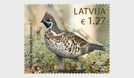 Birds - Hazel Grouse - Set