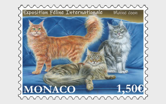 International Cat Show - Mint - Set