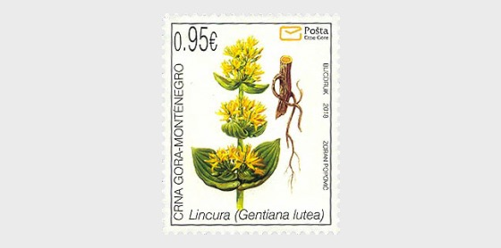 Flora 2018 - Series