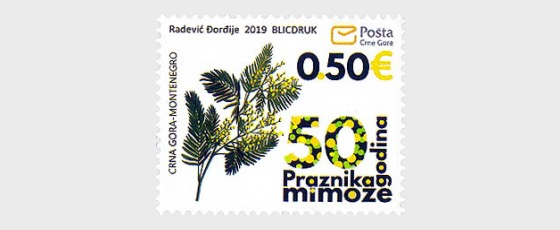 50th Anniversary of the Mimosa Festival - Set