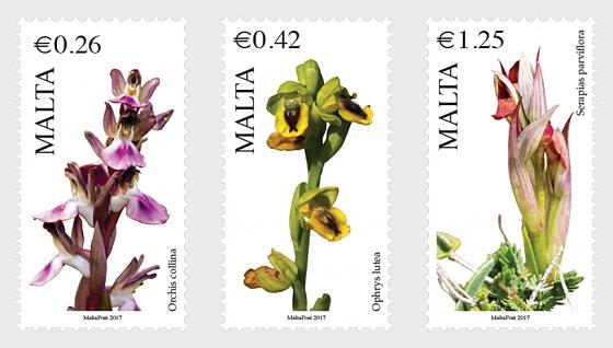 Maltese Flora Series VI  - Set