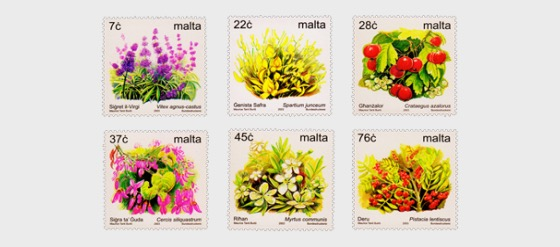 Definitive Flowers IV 2003 - Set