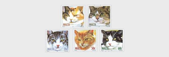 Cats - Set