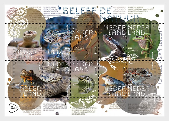 Experience Nature - Reptiles and Amphibians - Miniature Sheet