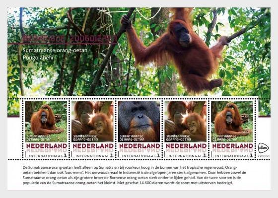 Endangered Mammals 2017 - Sumatraanse Orang-Oetan - Miniature Sheet