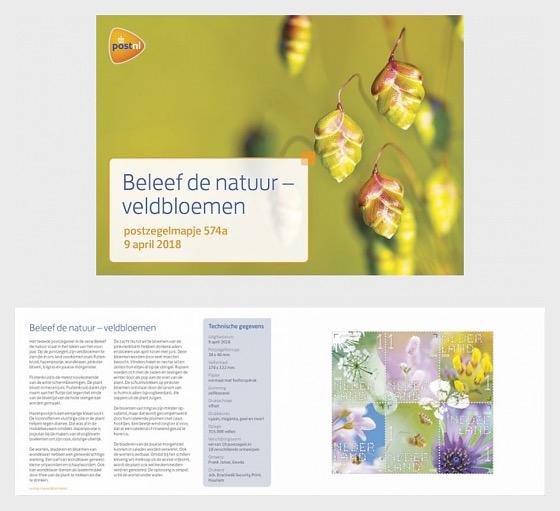 Sperimentare la Natura - I Fiori Selvatici - Libretto