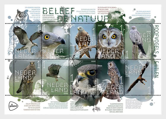 Experience Nature - Birds of Prey and Owls - Miniature Sheet