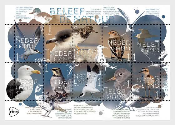 Experience Nature - Coastal Birds - Miniature Sheet