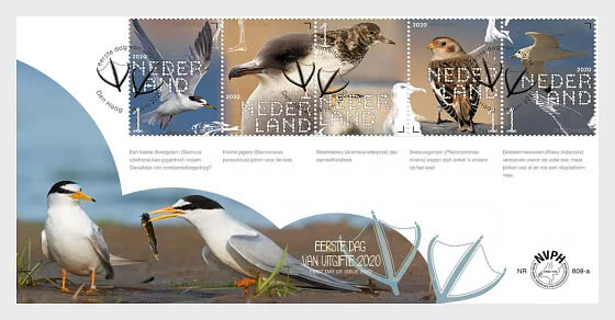 Experience Nature - Coastal Birds 809A - First Day Cover