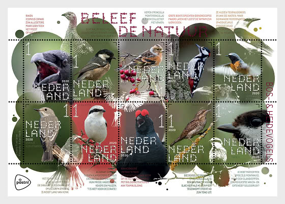 Vivi La Natura - Uccelli Della Foresta E Della Brughiera - Foglietti