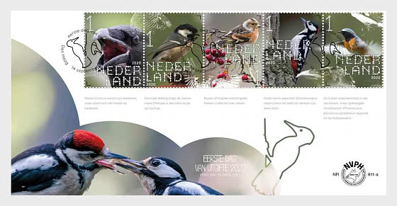 Experience Nature - Forest & Heathland Birds - 812A - First Day Cover