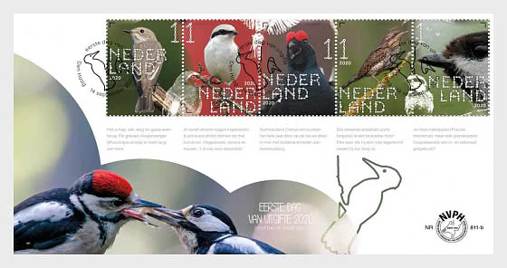Experience Nature - Forest & Heathland Birds - 812B - First Day Cover
