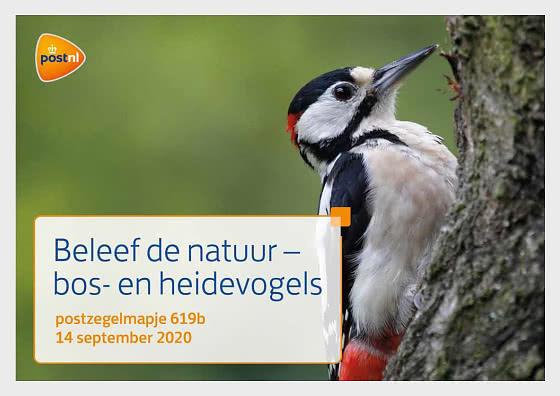 Experience Nature - Forest & Heathland Birds - 619B - Presentation Pack