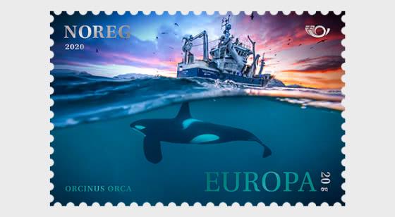Mammals - Orca - Set