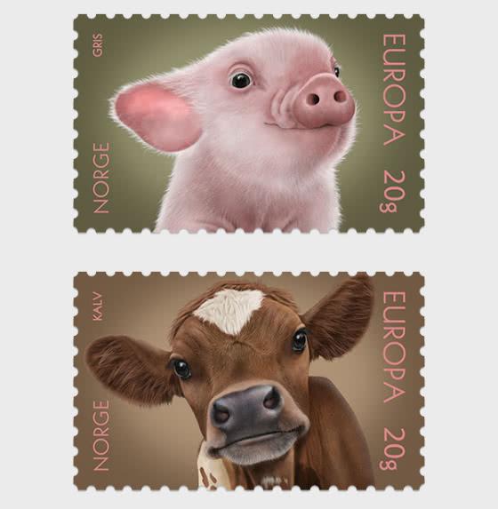Animales Domesticados - Series