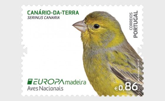 Madeira - Europa 2019 - Set