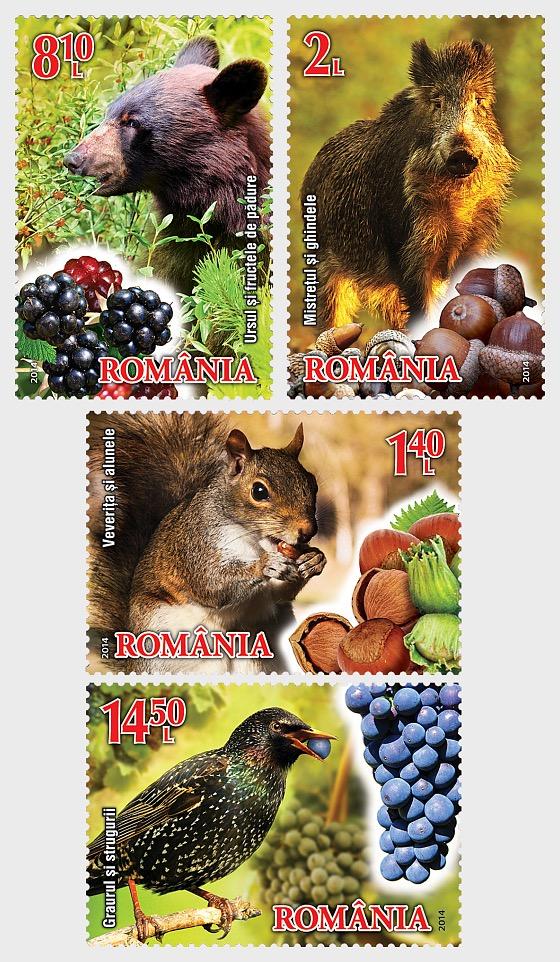 Fruits and Fauna - Set