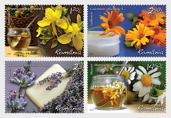 Live Healthy! Medicinal Plants, the health of your home! - Set