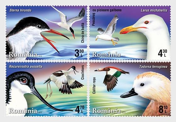 Aves Acuáticas - Series