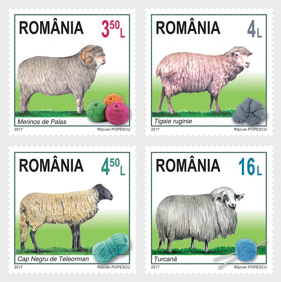 Breeds of Sheep from Romania - Set