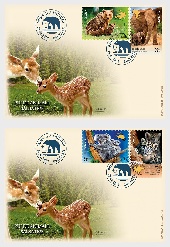 Wild Cubs - First Day Cover