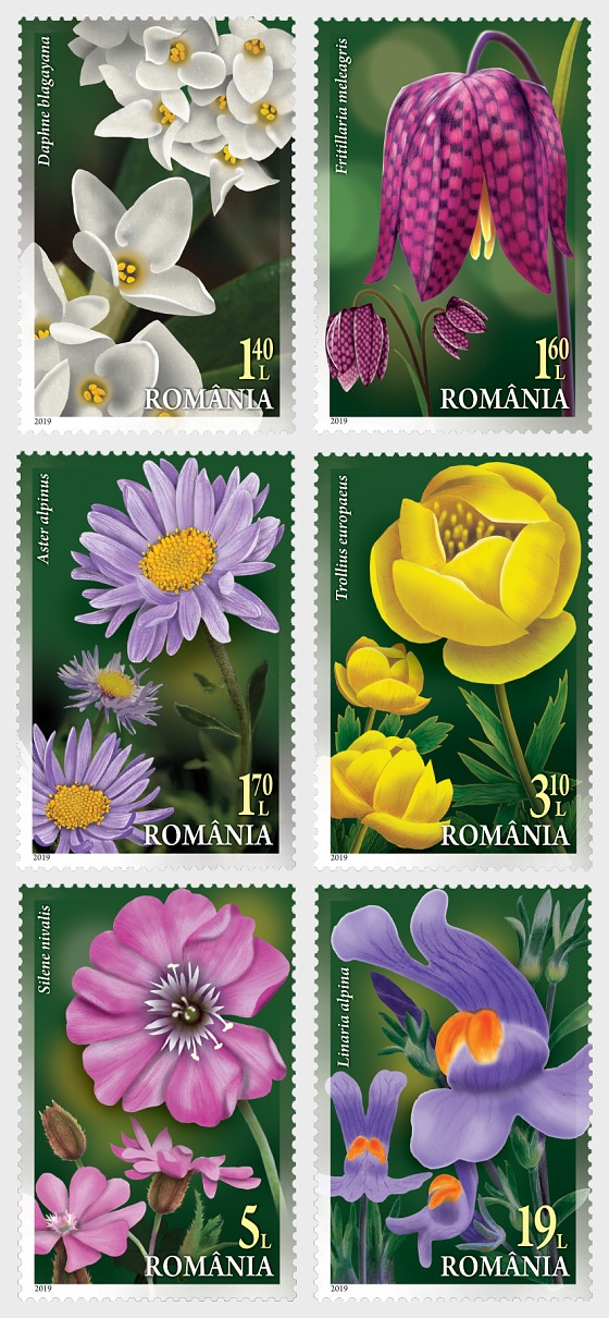 Floristic Patrimony of Romania - Set