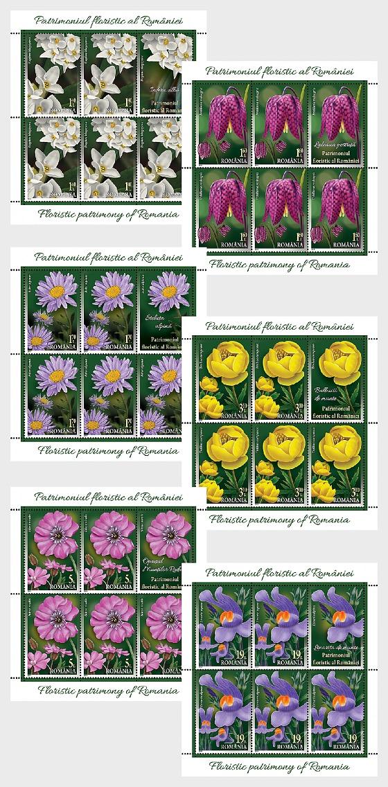 Floristic Patrimony of Romania - Sheetlets